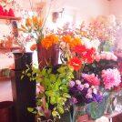 ハロウィンのアレンジメントを体験!住宅街で見つけたお花屋さんbourgeon(ブルジョン)@越谷