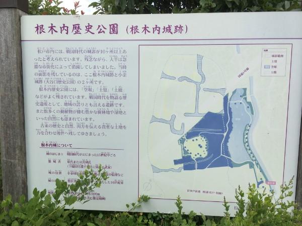 negiuchi-park04