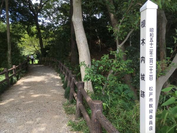 negiuchi-park10