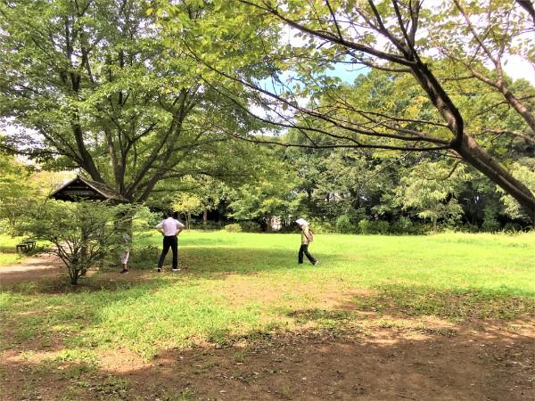 negiuchi-park13