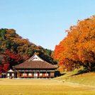 【紅葉ガイド2018】特別史跡旧閑谷学校(備前市閑谷)