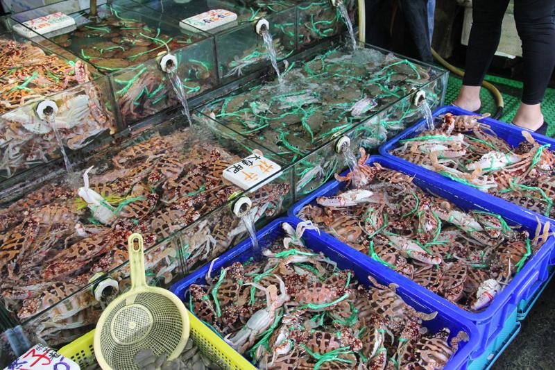 台湾・基隆・和平島の魚市場