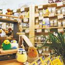 小鳥と愛鳥家のためのかわいい専門店がミニ大通にオープン とりきち横丁 札幌店