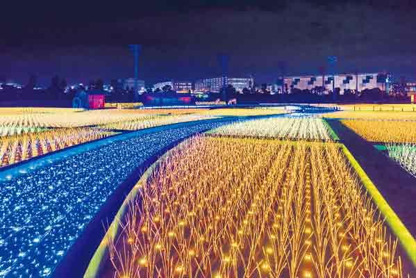 初開催! 感動! 煌く約1000万球「東京光の大祭典」&イルミネーションクルーズ