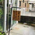 【武蔵小金井】駅近カフェ「ポップ・ポップ・カフェ」で音楽を聴きながらくつろぎの時間♪