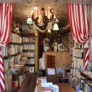 【吉祥寺】大人が夢中になる絵本の古書店「メインテント」で自分好みの1冊を
