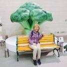 朝ドラ「ひよっこ」で話題になったミニチュア写真家・田中達也さんのミニチュア展@11/25まで