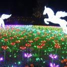 【入園券プレゼントあり】東武動物公園「ウィンターイルミネーション2018-2019」2019年2/11(月・祝)まで