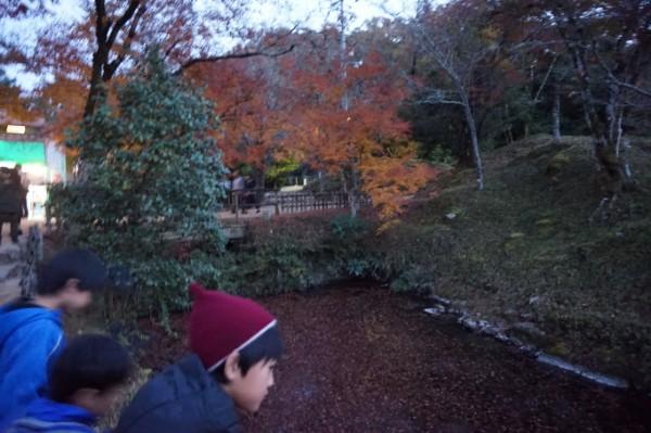 伝えていきたい秋を深める旧閑谷学校の紅葉