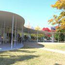紅葉に包まれてランチBENTO! 岡山大学構内にある「Jテラスカフェ」