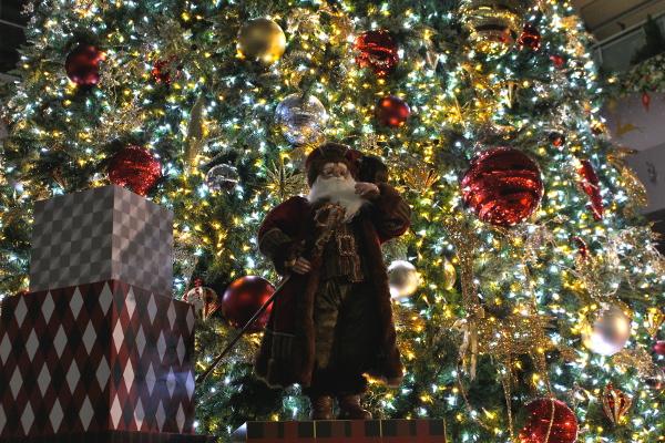 いよいよキラキラシーズン到来!名駅のクリスマスイルミネーション始まる