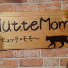 『宮城県丸森町』7月1日本オープンしたて!!【Hütte Momo】