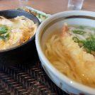 買い物の後は☆「どんと」でお得にランチを食べよう!!@フジグラン松山