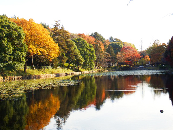 Resize_三ツ池公園④