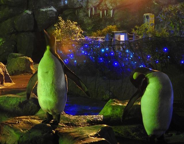 ペンギン舎