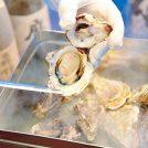 冬のおいしいが満載!リビングきりしまグルメガイド「浜焼酒場 海鮮太郎」