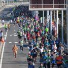 2018.12/2(日) 第13回 湘南国際マラソンを応援