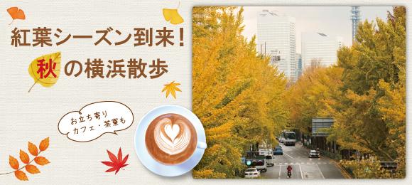 絶景!横浜の紅葉スポット&立ち寄りカフェを紹介!