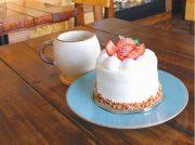 あっさり優しい味わいのケーキを、居心地の良い店内で HACHI CAFE(ハチカフェ)