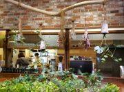グリーンに囲まれた癒しのカフェ「3.CAFÉ GARDEN PLACE」@三津浜