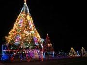 【倉敷市玉島】冬の夜こそ出かけよう!今しか見られないクリスマスイルミネーション