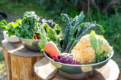 wロカンダデルクオーレ野菜
