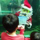 【大田原】「水中サンタ」からサプライズも!栃木県なかがわ水遊園