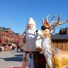 赤レンガでクリスマスを楽しもう!【みなとみらい】