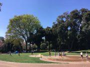 【目白台】0歳から親子で楽しめる目白台運動公園、人気の秘密とは?