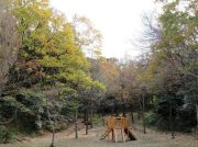 【鎌倉中央公園】子供がよろこぶ木製遊具が登場!