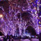 2/17まで!青く輝く♪横浜のイルミネーション「ヨコハマミライト」