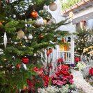 花と光に包まれたクリスマスガーデン!「フローラルクリスマス」を楽しもう