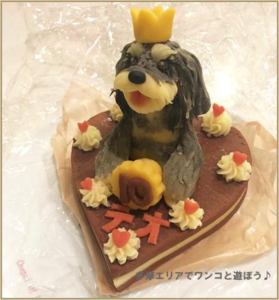 ロビナのドッグケーキ