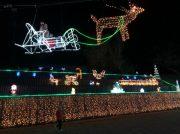 【湧水町】今年度で最後!!「二渡りイルミネーション 星のさんぽ道」点灯期間は1月7日まで