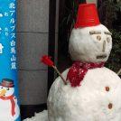 毎年恒例♪今年も町田に雪が来る!【ぽっぽ町田】