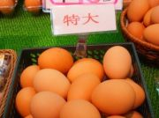 茨木の卵専門店「土岐鶏卵」の新鮮卵は濃厚でおいしい!