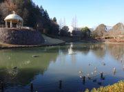 大人も子供も楽しめる!大きな池のある七井戸公園