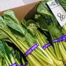 元シェフが新鮮野菜販売中!JR南大高駅前で月・金・土に「カリーナマーケット」開催