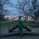 夜景がきれいなお花見スポット【三神峯公園】
