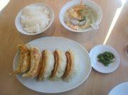 【宇都宮】びっくりサイズのシャキシャキ餃子!中華トントン