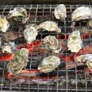 今が旬!「とれたて漁師の店 稲荷丸」で牡蠣60分食べ放題【岡山・瀬戸内市】