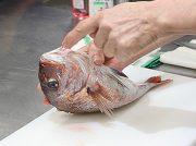 鯛、さばけますか?水産市場で学ぶ人気教室「魚のさばき方料理教室」で料理の腕前UP!