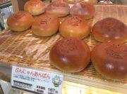 【文京区・江戸川橋】「カフェ BUNBUN」は、地元客で大にぎわい!!