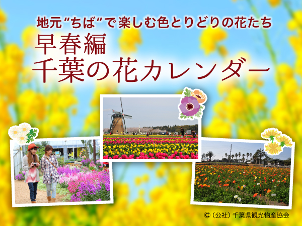 早春編では、2月~4月に見ごろを迎える花スポットを紹介!