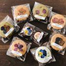 SNSで大人気!お花のクッキーが美しい「コチト」@西荻窪