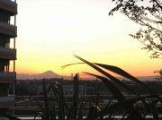 筑波山や富士山を見ながら、辻仲病院柏の葉8階のカフェでティータイム