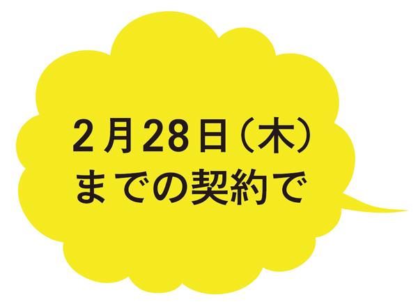 2月28日(木)までの契約で