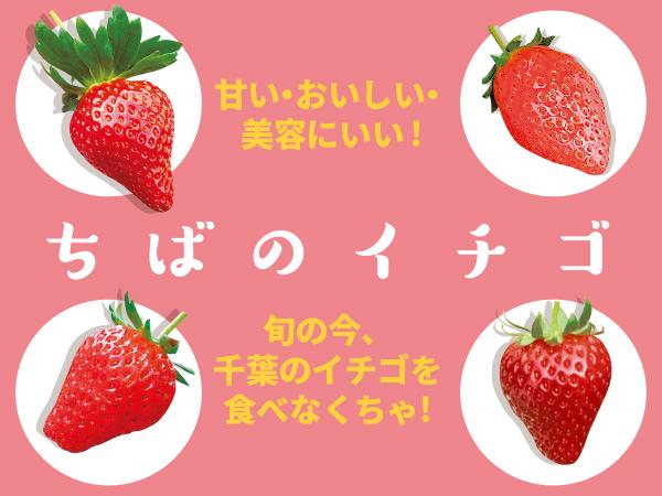 おいしくて美容にいい!旬のちばのイチゴの魅力が丸わかり