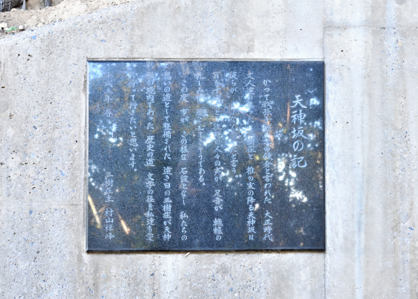 天神山緑地 改改_285