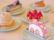 【宮城野区幸町】親子が笑顔で過ごせるカフェ「スイーツパークニコ」